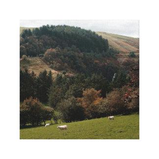 Toile Vallée Pays de Galles de fanion