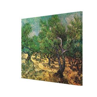 Toile Verger olive par Vincent van Gogh, beaux-arts