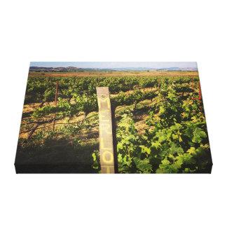 Toile Vignobles de jacuzzi dans les raisins