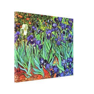 Toile Vincent van Gogh - iris - beaux-arts d'amant de