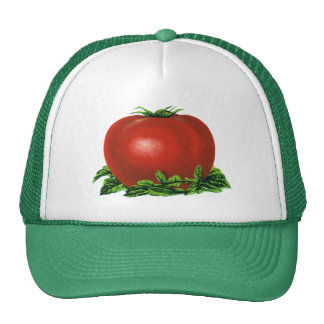 Tomate mûre rouge vintage, légumes et fruits casquettes de camionneur
