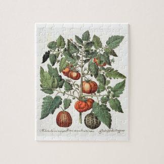 Tomates et melons : luteo de fructu des amoris 1.P Puzzle
