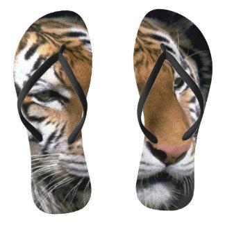 Tongs Amant de tigre barré