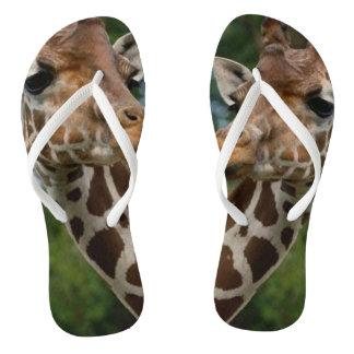Tongs Amants de girafe