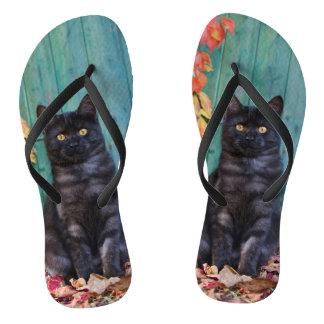 Tongs Chaton mignon de chat noir avec la photo bleue de