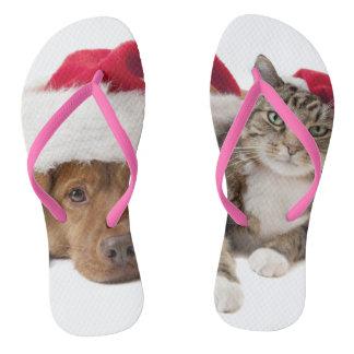 Tongs Chats et chiens - chat de Noël - chien de Noël