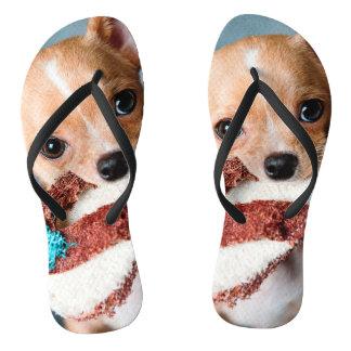 Tongs chihuahua flip flops
