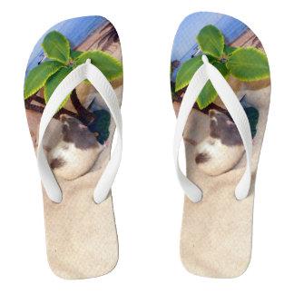 Tongs M. Bean de rat d'animal familier aux bascules