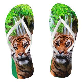 Tongs Tigre et cascade