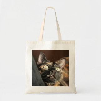 tortoiseshell cat bag sac en toile