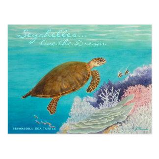 Tortue de mer de Hawksbill Carte Postale