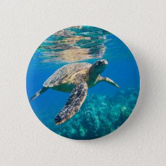 Tortue de mer de natation pin's