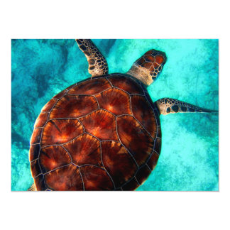 Tortue de mer glorieuse carton d'invitation  13,97 cm x 19,05 cm