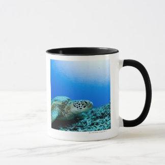 Tortue de mer se reposant sous l'eau tasse