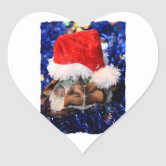 Tortue de musc Razorbacked chapeau de Père Noël a Autocollants