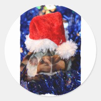 Tortue de musc Razorbacked, chapeau de Père Noël Sticker Rond