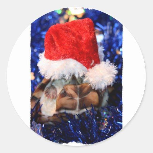 Tortue de musc Razorbacked, chapeau de Père Noël Autocollant Rond
