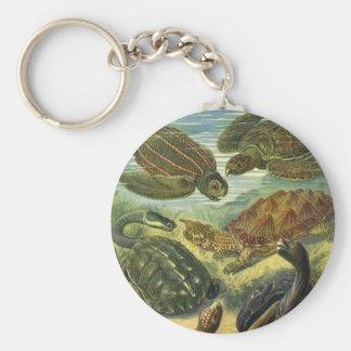 Tortue vintage de terre de tortues de mer, animaux porte-clé rond