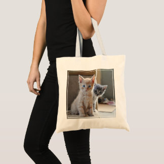 Tote Bag Chatons curieux