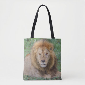 Tote Bag Lion masculin se couchant