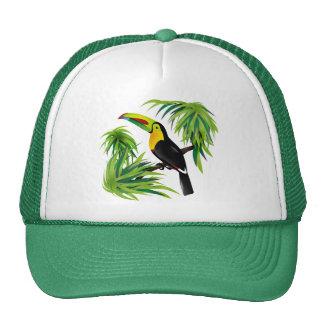 Toucan de jungle casquettes
