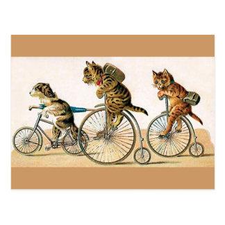 Tour de bicyclette cartes postales