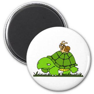 Tour de tortue magnet rond 8 cm