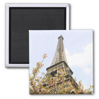 Tour Eiffel, Paris Aimant