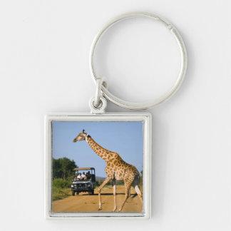 Touristes observant la girafe porte-clé carré argenté