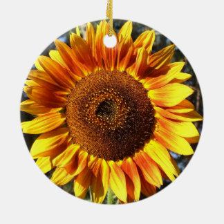 Tournesol coloré de beauté d'automne dans le rond ornement de noël