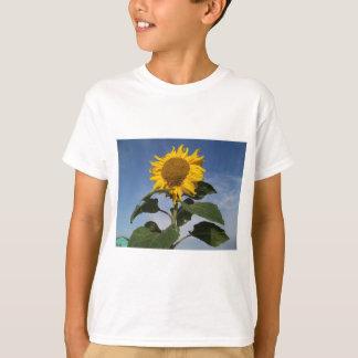 Tournesol contre le ciel bleu t-shirt