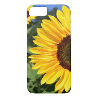 Tournesol Coque iPhone 7