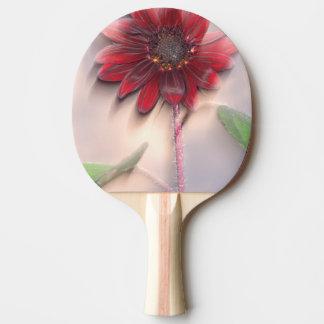 Tournesol hybride soufflant dans le vent raquette de ping pong