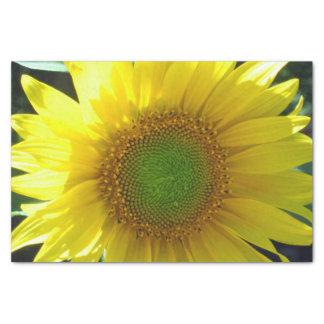Tournesol jaune lumineux papier mousseline