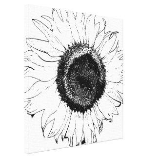 Tournesol noir et blanc toile