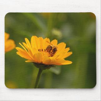 Tournesols avec l abeille tapis de souris