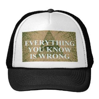 Tout que vous savez est erroné casquette