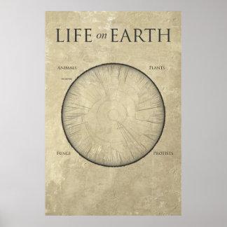 Toute la vie sur terre tracée sur une affiche géa