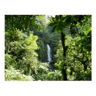 Trafalgar tombe photographie tropicale de forêt cartes postales