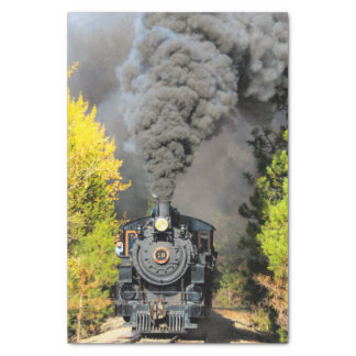 Train 19 papier mousseline