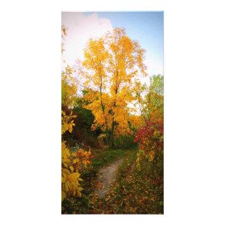 Traînée d'automne carte avec photo