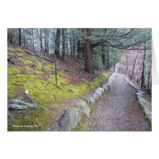 Traînée de marche à l'étang de Walden, carte de