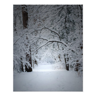 traînée d'hiver tirages photo