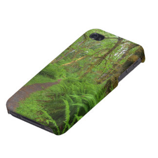 Traînée, fougères et mousse de clairière d'érable iPhone 4 case
