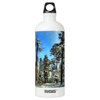 Traînées de neige d'hiver dans la forêt d'arbres