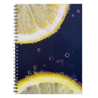 Tranches délicieuses de citron dans l'eau carnet