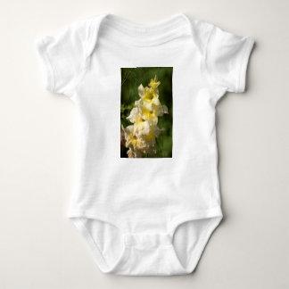 Transitoire jaune de fleur de glaïeul body