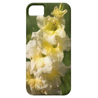 Transitoire jaune de fleur de glaïeul coques iPhone 5