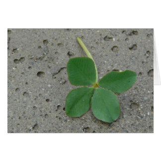 Trèfle de quatre feuilles - charme chanceux carte de vœux