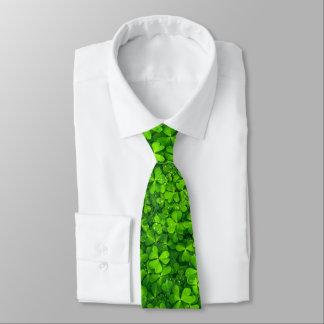 Trèfles feuillus verts avec des baisses de l'eau cravate